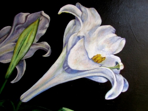 The painted form of the Easter Lily turned toward the light is a detail from 'Resurrection Lilies.'